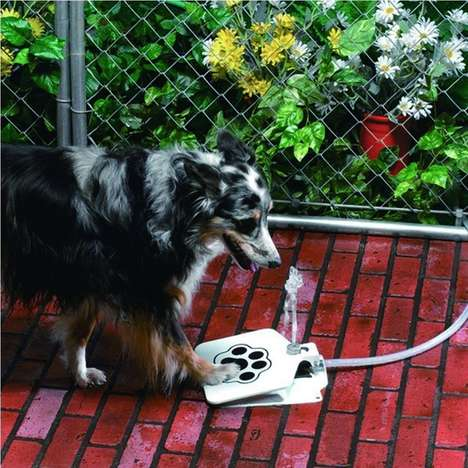 Pet-Friendly Portable Fountains - The T Tocas Automatic Water Fountain is Ideal for Backyard Use