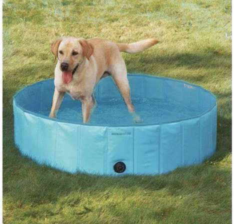 Modular PVC Dog Pools - Pettom's Large Backyard Pool Helps Pets to Stay Cool in the Summer Heat