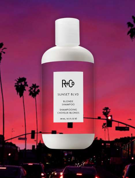 Brightening Light Hair Shampoos - R+Co's Blonde Shampoo Improves the Appearance of Light Hair
