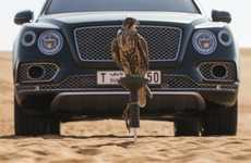 Falconry-Focused Luxury Vehicles