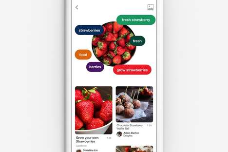 Food Recognition Apps - The Pinterest Lens Feature Recognizes Dishes and Offers Up Recipes