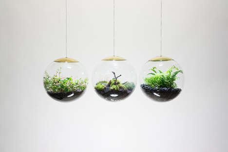 Spherical Hanging Terrariums - These Terrariums Also Function as Lamps for Modern Homes