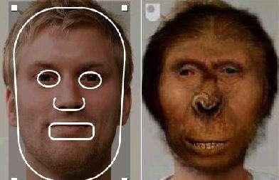 You As A Prehistoric Man - 'Devolve Me' Reverse-Evolves Photos of Your Face