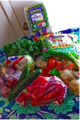 Frugal Vegan Photoblogs