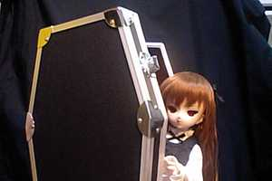 From Baskets to Caskets, Dollfies Get Carried Away in Style