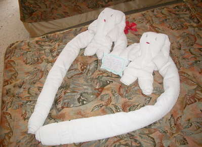 Towel Origami