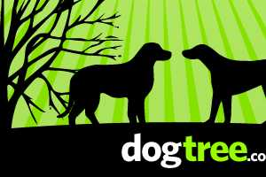 Australian Dogtree Lets You Find Puppy Playmates Online
