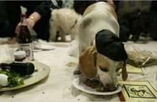 Kosher Pets
