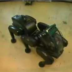 Giant Ant Robot