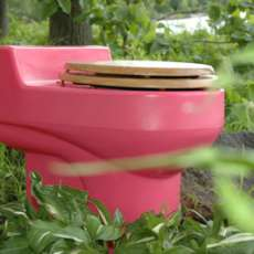 Go Green with a Pink Toilet (or 14 other Colors)