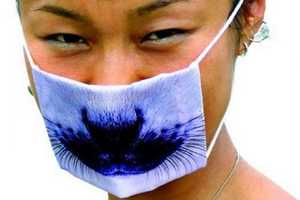 Fun Face Masks to Fend Off Swine Flu Symptoms (UPDATE)