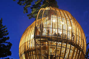 The Yellow Treehouse Opens its Doors in New Zealand