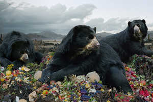 'Until Kingdom Comes' Digital Photo Creations by Simen Johan