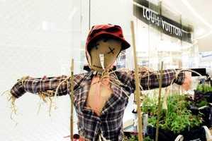 Louis Vuitton Teams with Jeremy Deller for High End Vegetable Garden