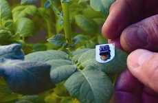 Texting Veggies - Microchipped Plants Notify Farmers of Thirst Via Cell Phone