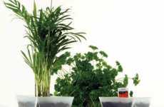 Micro Greenhouses