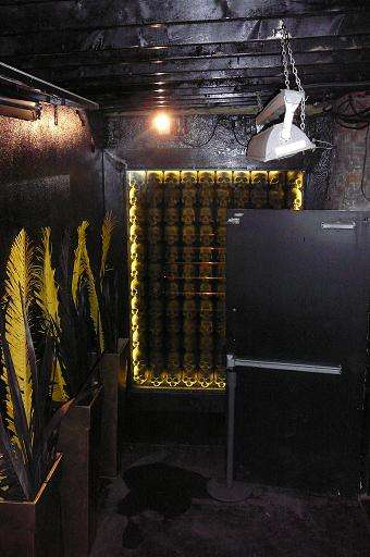 Buried Tomb Bars - Cobra Nightclub In Toronto is an Ironically Lively Adventure