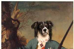 Valerie Leonard Makes Your Pooches Look Princely