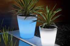 Radiant Plant Pots