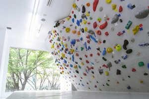 PekiPeki in Tokyo Lets Customers Enjoy Bright Bouldering