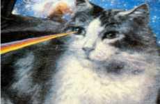 Cat Eye Lasers