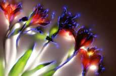 Electrocuted Flowers - Robert Buelteman's Photography Makes Foliage Electrifying