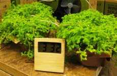 Plant Powered Clocks