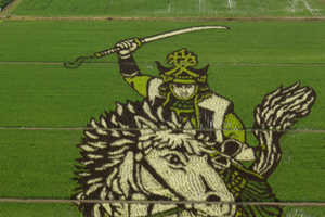 Rice Paddy Crop Fields are Becoming Canvases in Japan (UPDATE)