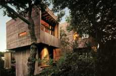 Tree Palaces - Bates Masi Architects Combine Wood Paneled Treehouse and Contemporary Design