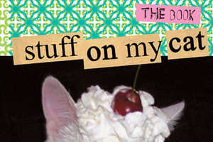 'Stuff On My Cat' Catalogues Messing With Our Furry Friends