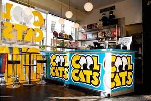 Cool Cats Pop Up Shop Collaboration with Nike and LIVESTRONG