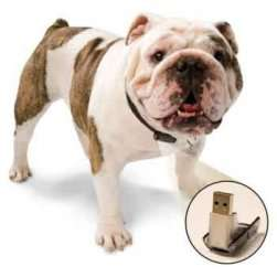 Gadgets for Pets - PetSafe Micro I.D. Rescue Collar for Dogs and Cats