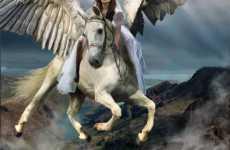 Bridal Pegasuses