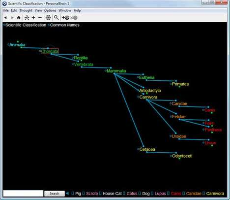 Virtual Mindmapping