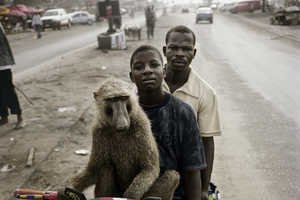 Michael Stevenson's 'The Hyena Men' Shows off Man's New Best Friend