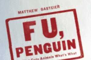 'F U, Penguin' Blog Disses Adorable Animal Viral Media