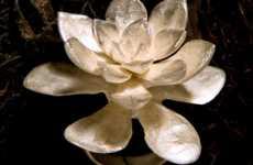 Lotus Rings