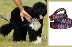 Bo's 'I Heart Obama' Dog Collar and Leash Set