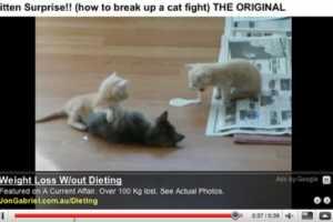 'Bad Contextual Ads' Captures Tragic Pairings of Ads & Context
