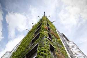 Patrick Blanc Makes Epic Greenery on Walls of Athenaeum Hotel