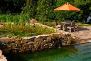All-Natural Pool Boasts Beauty and Eco Efficiency