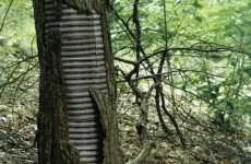 Reskinning Nature