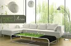 Grassy Coffee Tables - 'Oxygen of Green' Air Plants Provide Natural Air for Homes