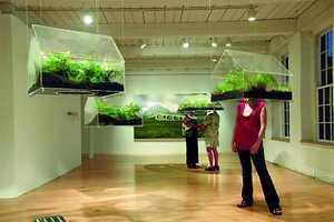 Vaughn Bell's Exhibit Puts Eco in Your Face
