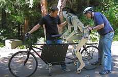 Never Ride Alone With Joules, the Tandem Bike Partner