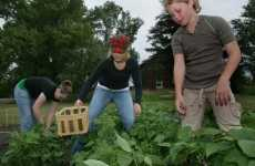 Employer-Sponsored Gardens - Companies Turn to Gardening to Boost Workplace Morale