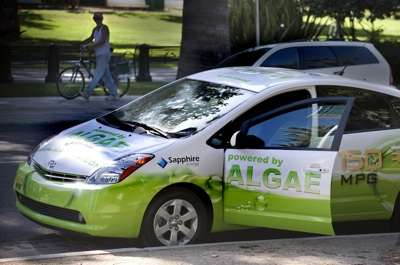 Algae Powered Cars