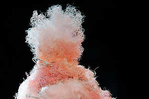Pastel Afros Grace Comme des Garcons Spring 2010 Collection