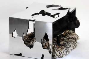 Jimmi's Galaxy is Innovative Way for Animals to Slumber