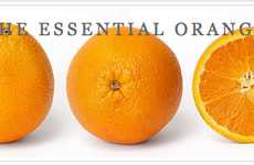 The Essential Orange: Jeremy Gutsche on Exploiting Chaos